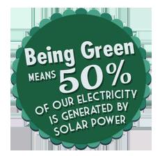 noreeastcleaners-green
